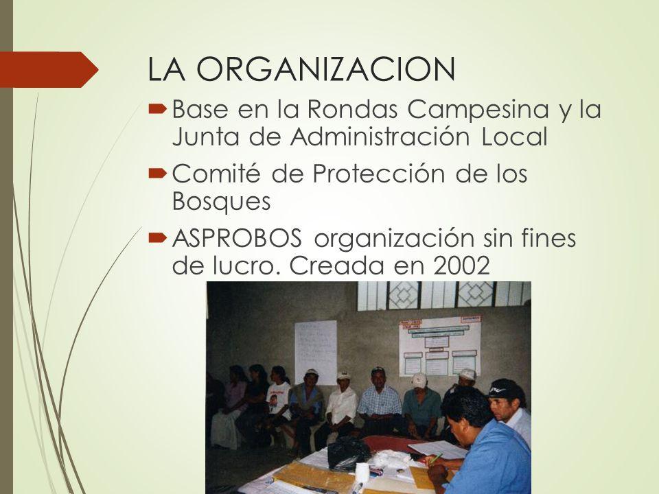LA ORGANIZACION Base en la Rondas Campesina y la Junta de Administración Local. Comité de Protección de los Bosques.