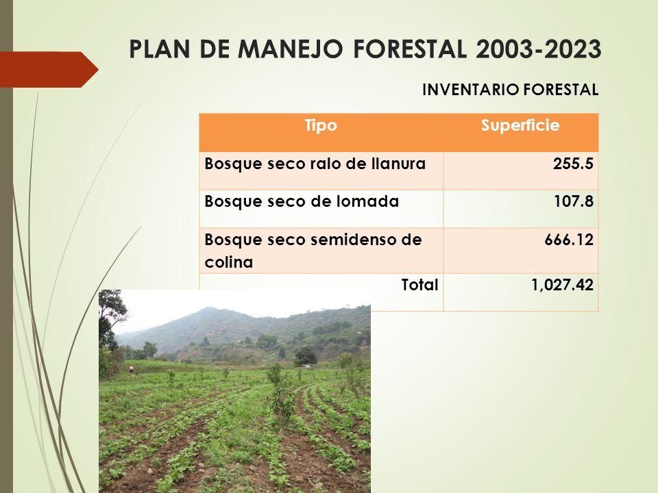 PLAN DE MANEJO FORESTAL 2003-2023