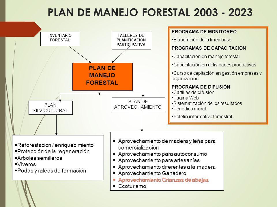 PLAN DE MANEJO FORESTAL 2003 - 2023