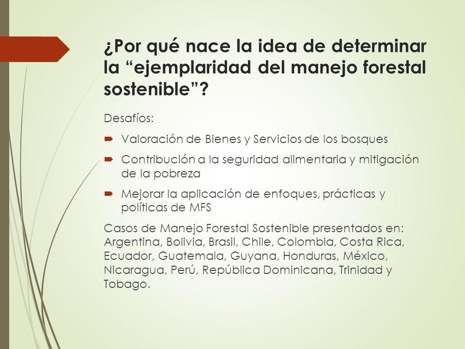¿Por qué nace la idea de determinar la ejemplaridad del manejo forestal sostenible