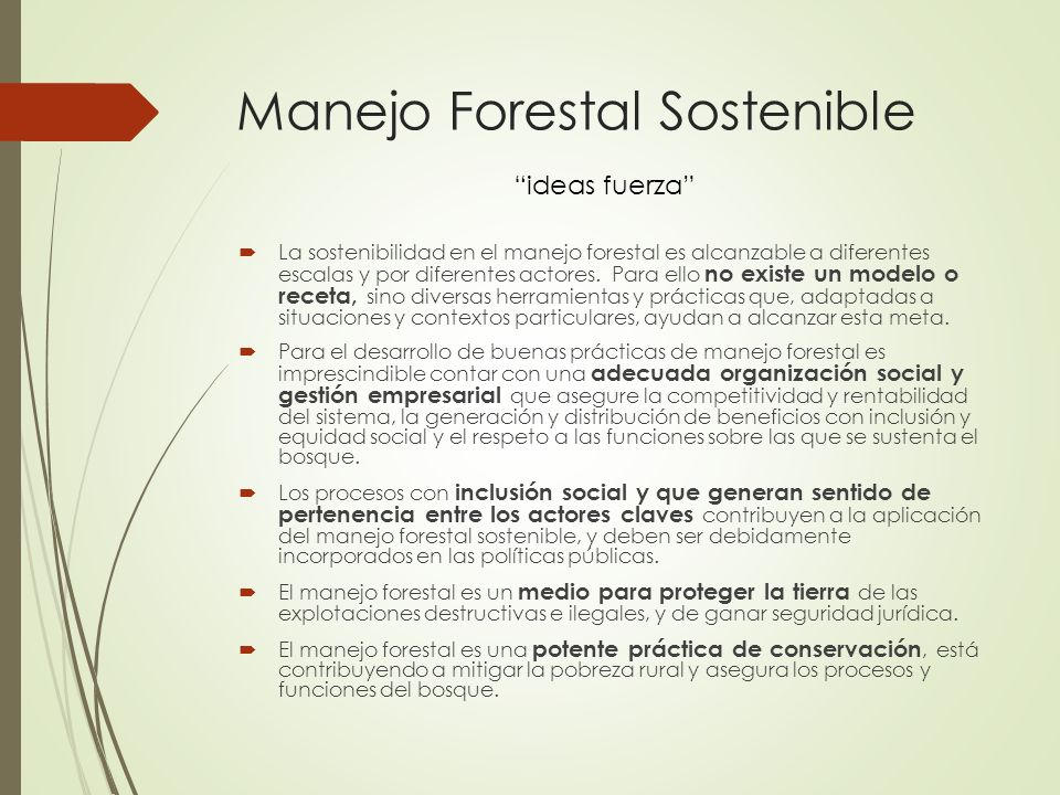Manejo Forestal Sostenible