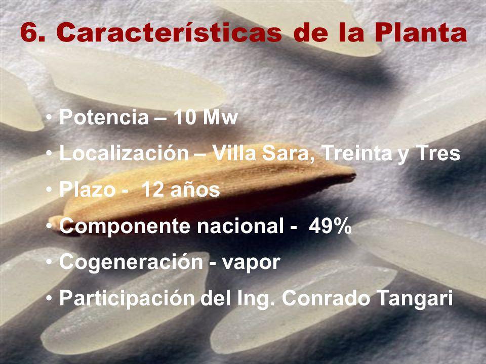 6. Características de la Planta