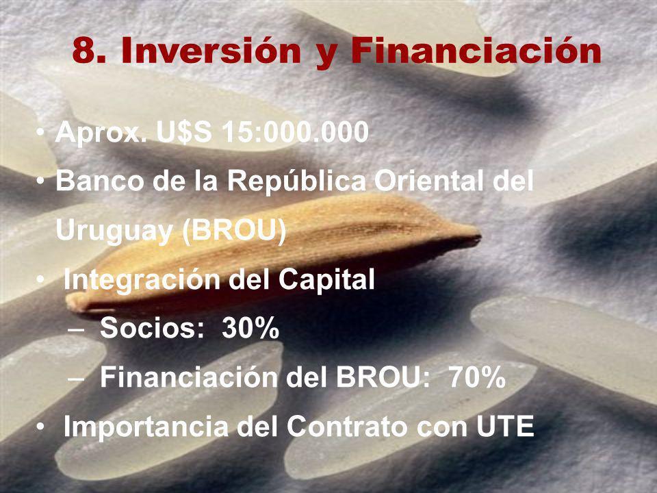 8. Inversión y Financiación