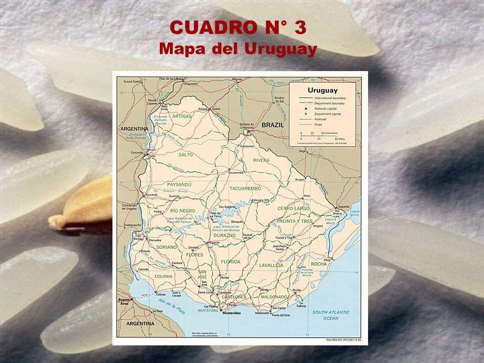 CUADRO N° 3 Mapa del Uruguay