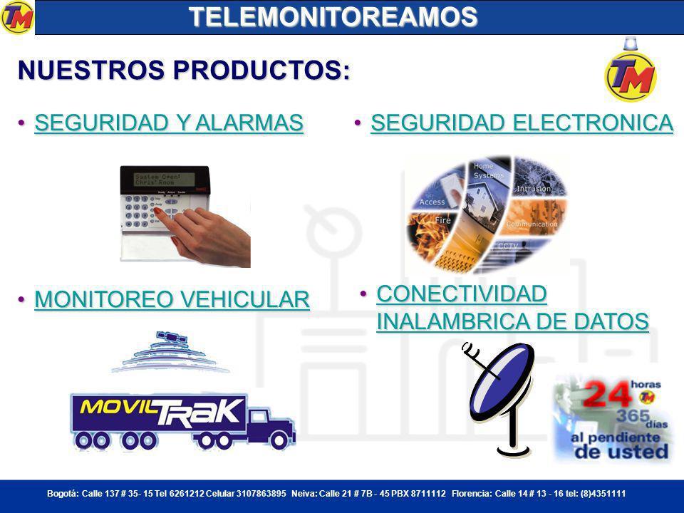 TELEMONITOREAMOS NUESTROS PRODUCTOS: SEGURIDAD Y ALARMAS