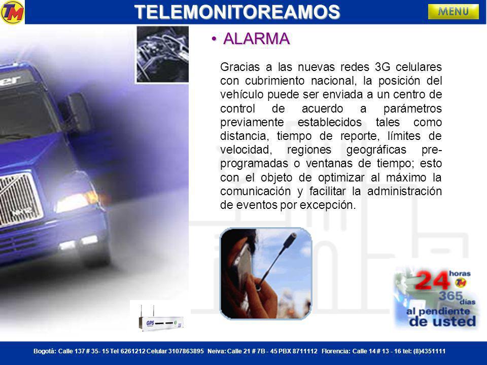 TELEMONITOREAMOS ALARMA