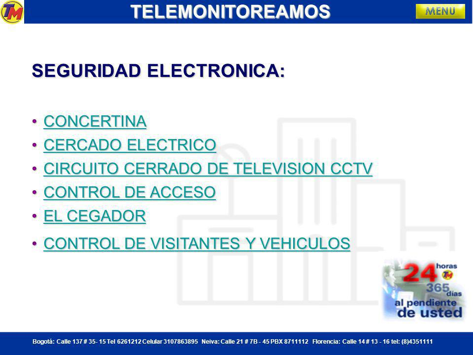 SEGURIDAD ELECTRONICA: