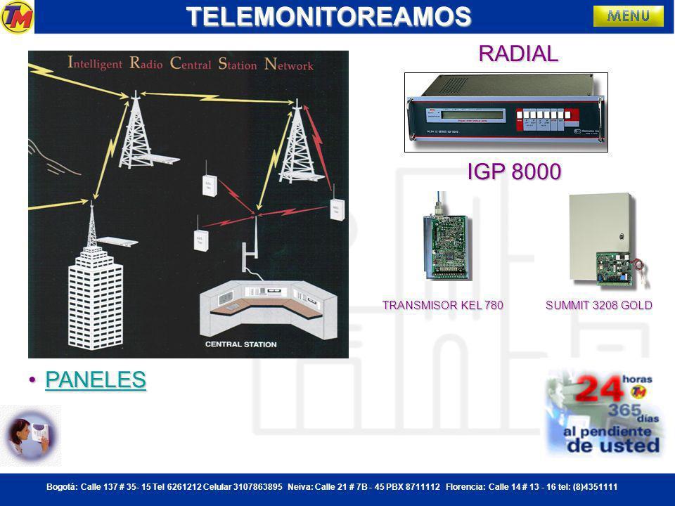 TELEMONITOREAMOS RADIAL IGP 8000 PANELES TRANSMISOR KEL 780