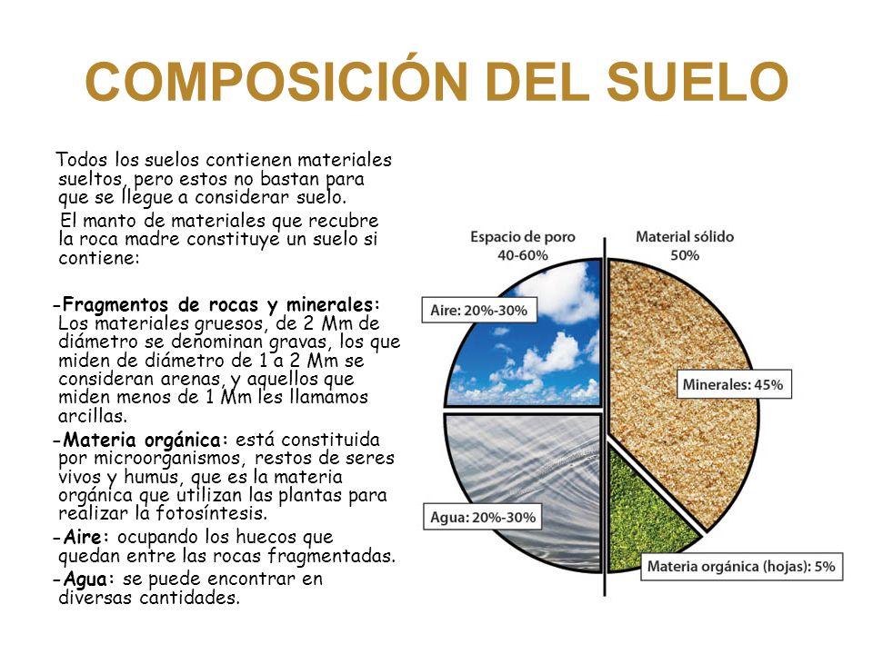 El suelo el suelo el suelo el suelo el suelo el suelo el for Materiales que componen el suelo