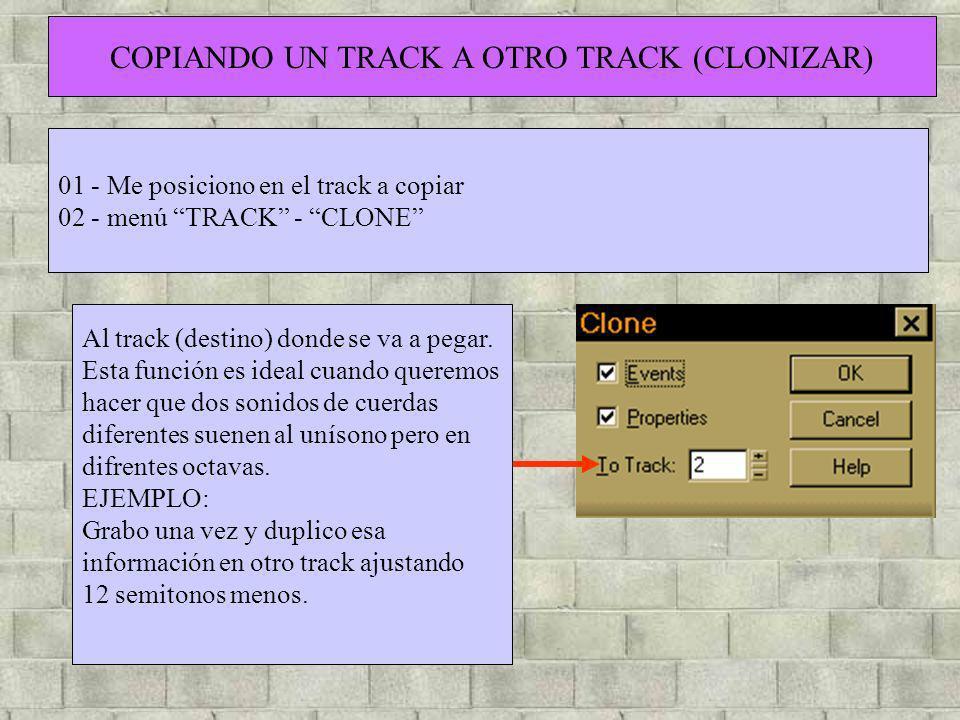 COPIANDO UN TRACK A OTRO TRACK (CLONIZAR)