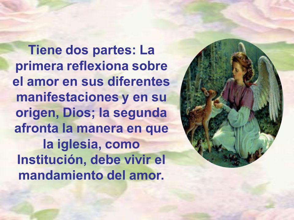 Tiene dos partes: La primera reflexiona sobre el amor en sus diferentes manifestaciones y en su origen, Dios; la segunda afronta la manera en que la iglesia, como Institución, debe vivir el mandamiento del amor.