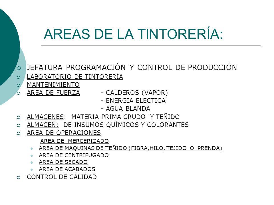 AREAS DE LA TINTORERÍA:
