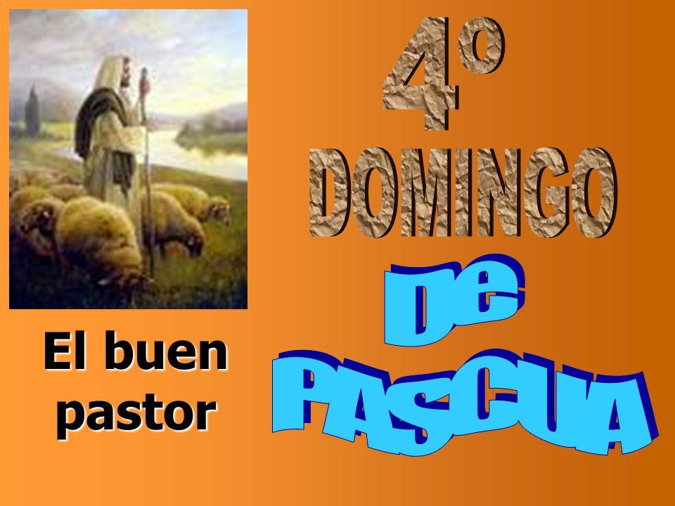 4º DOMINGO De PASCUA El buen pastor