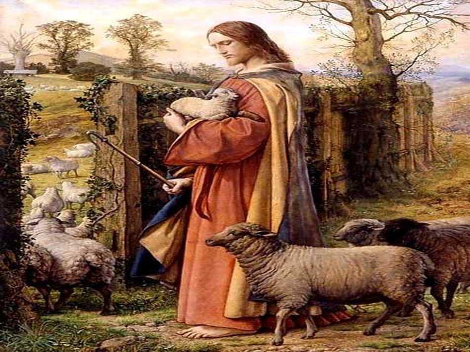 Pero el que entra por la puerta es pastor de las ovejas.