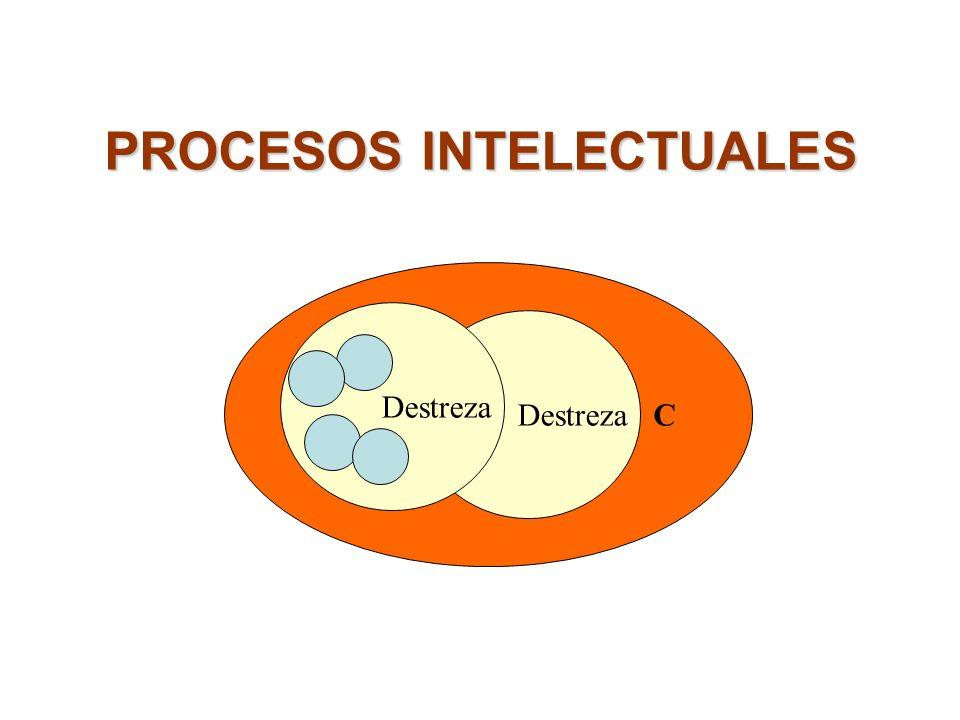 PROCESOS INTELECTUALES