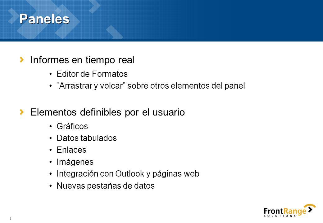 Paneles Informes en tiempo real Elementos definibles por el usuario