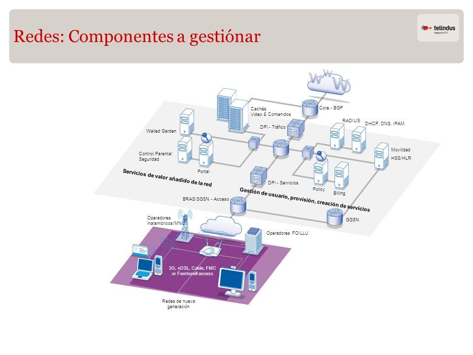 Redes: Componentes a gestiónar
