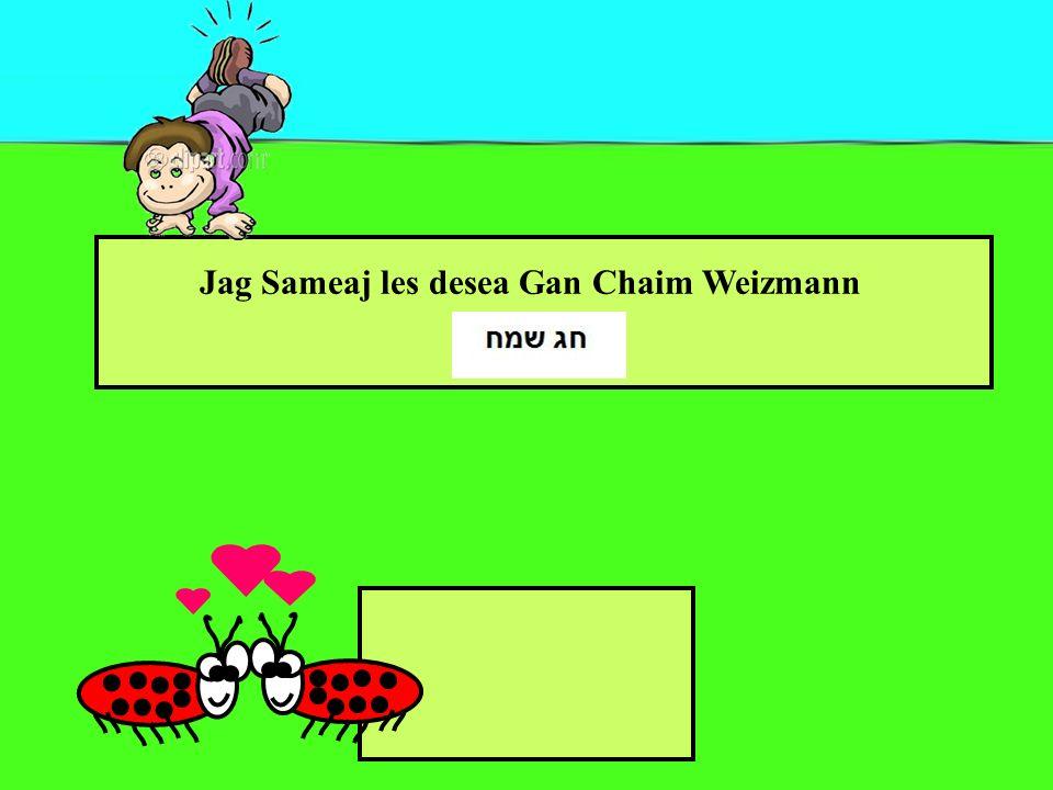 Jag Sameaj les desea Gan Chaim Weizmann