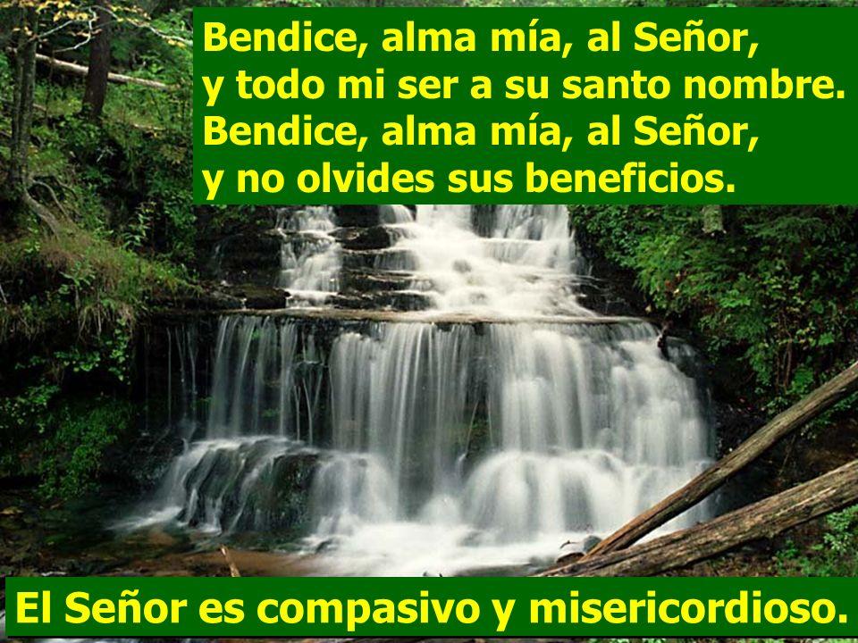 El Señor es compasivo y misericordioso.
