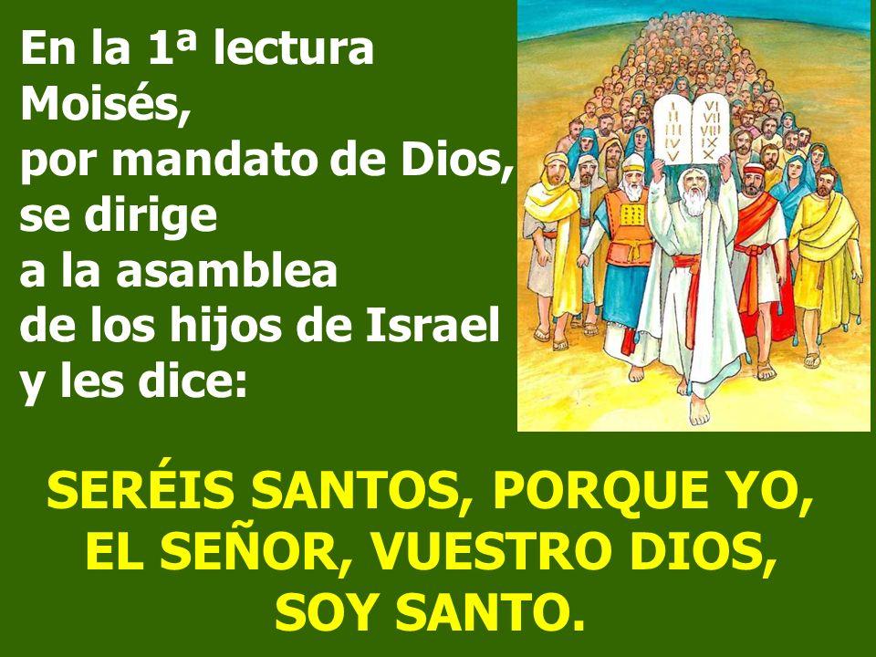 SERÉIS SANTOS, PORQUE YO, EL SEÑOR, VUESTRO DIOS, SOY SANTO.