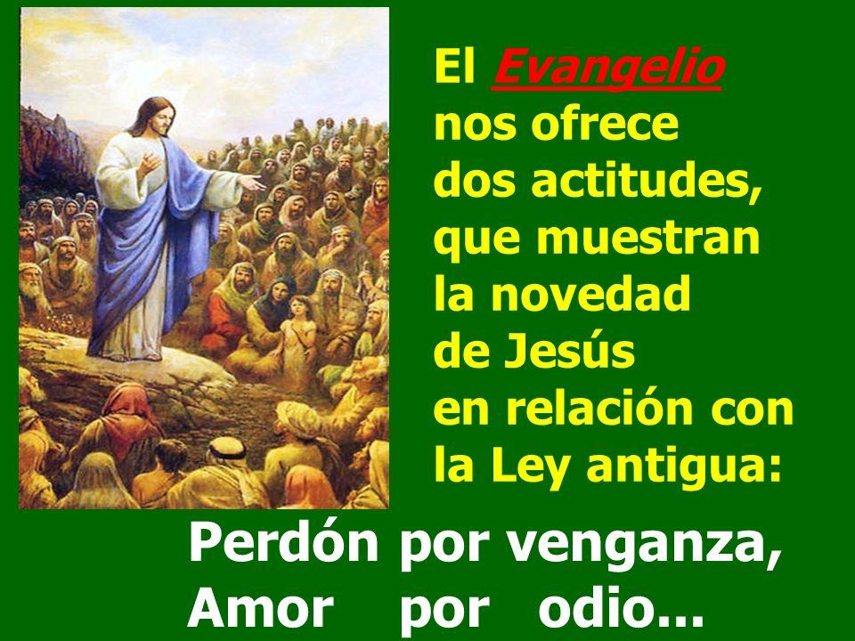Perdón por venganza, Amor por odio... El Evangelio nos ofrece