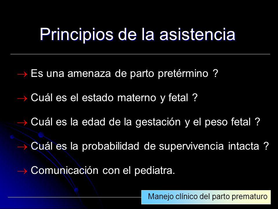 Principios de la asistencia
