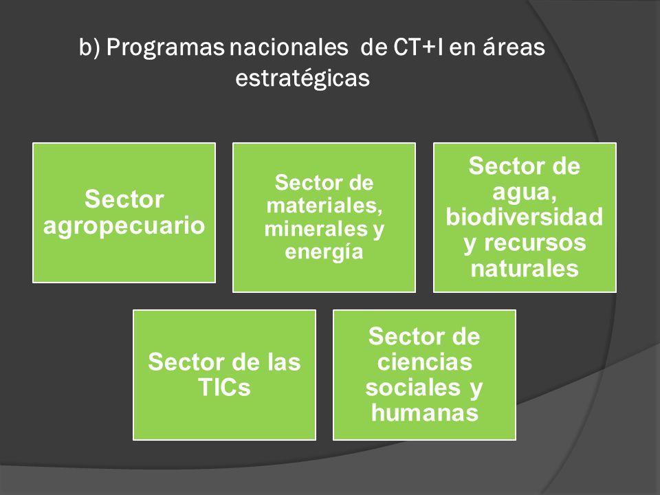 b) Programas nacionales de CT+I en áreas estratégicas