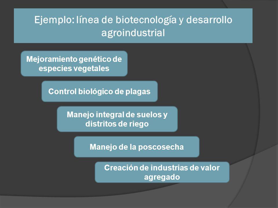 Ejemplo: línea de biotecnología y desarrollo agroindustrial