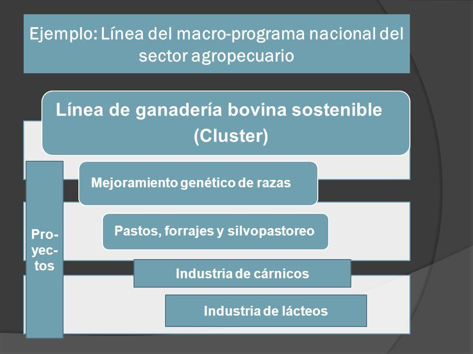Ejemplo: Línea del macro-programa nacional del sector agropecuario