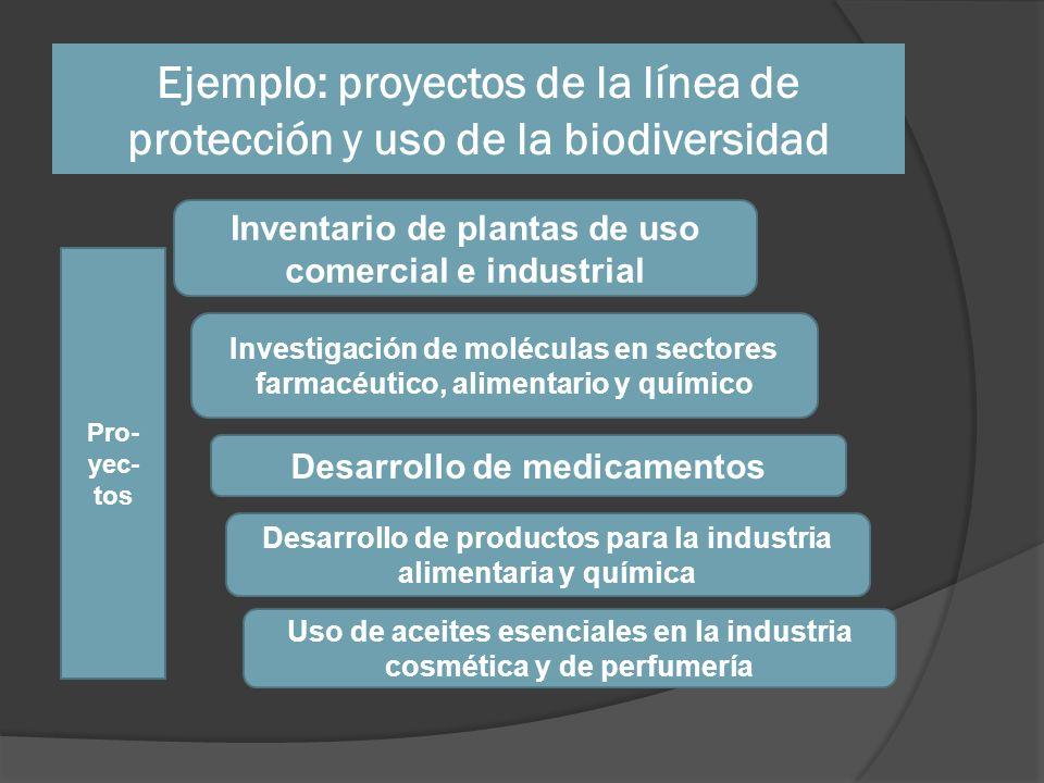 Ejemplo: proyectos de la línea de protección y uso de la biodiversidad