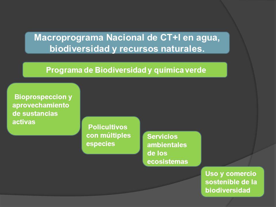 Programa de Biodiversidad y química verde