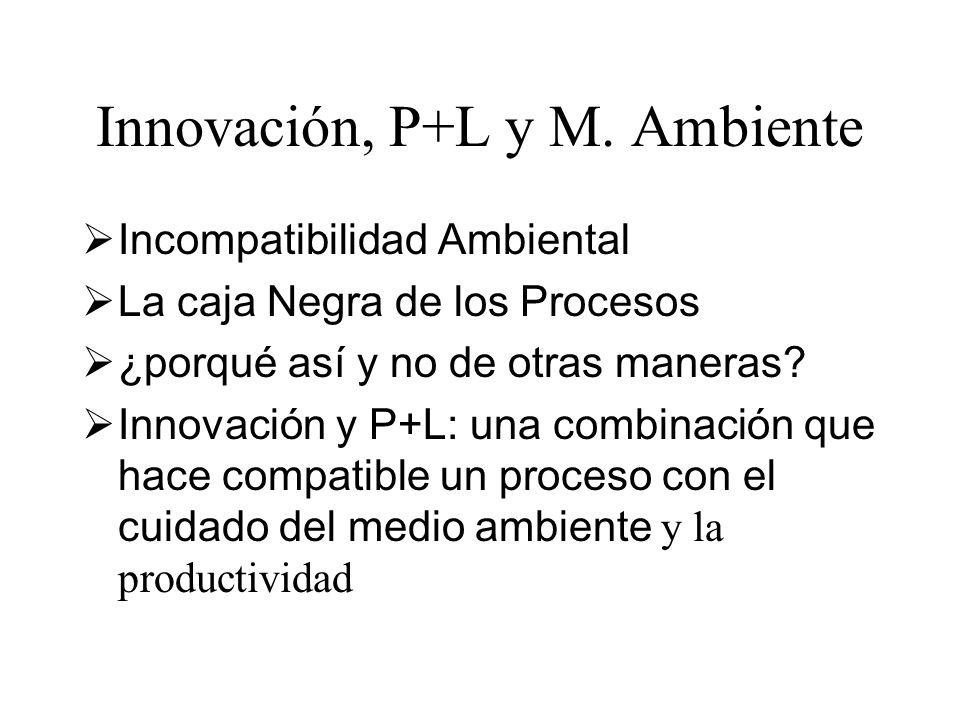 Innovación, P+L y M. Ambiente