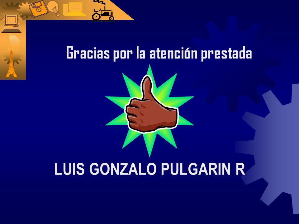 LUIS GONZALO PULGARIN R