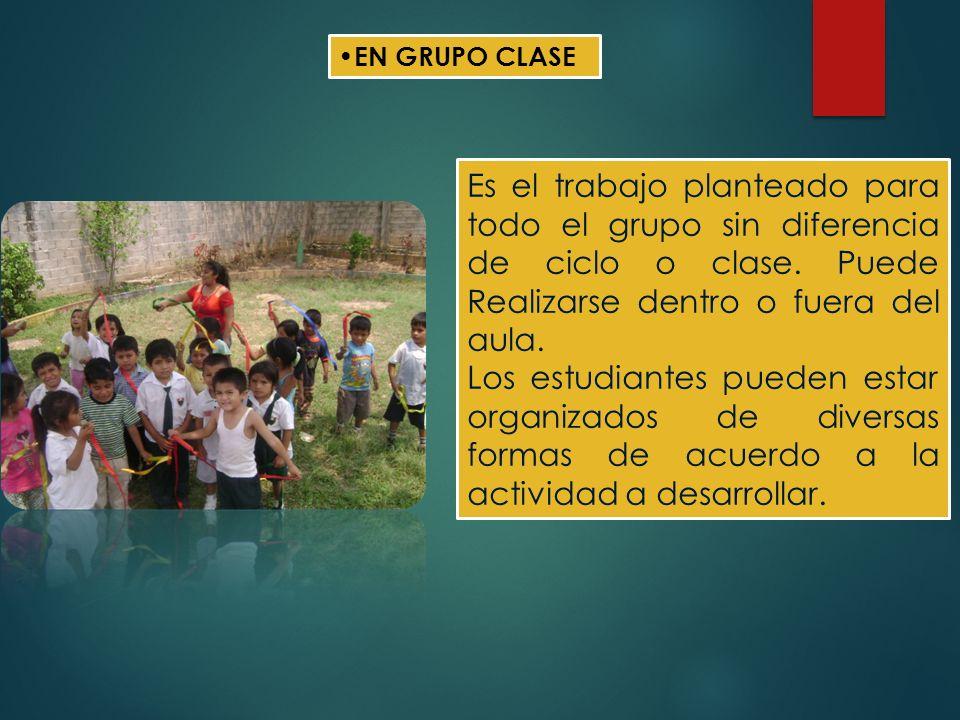 EN GRUPO CLASE Es el trabajo planteado para todo el grupo sin diferencia de ciclo o clase. Puede Realizarse dentro o fuera del aula.