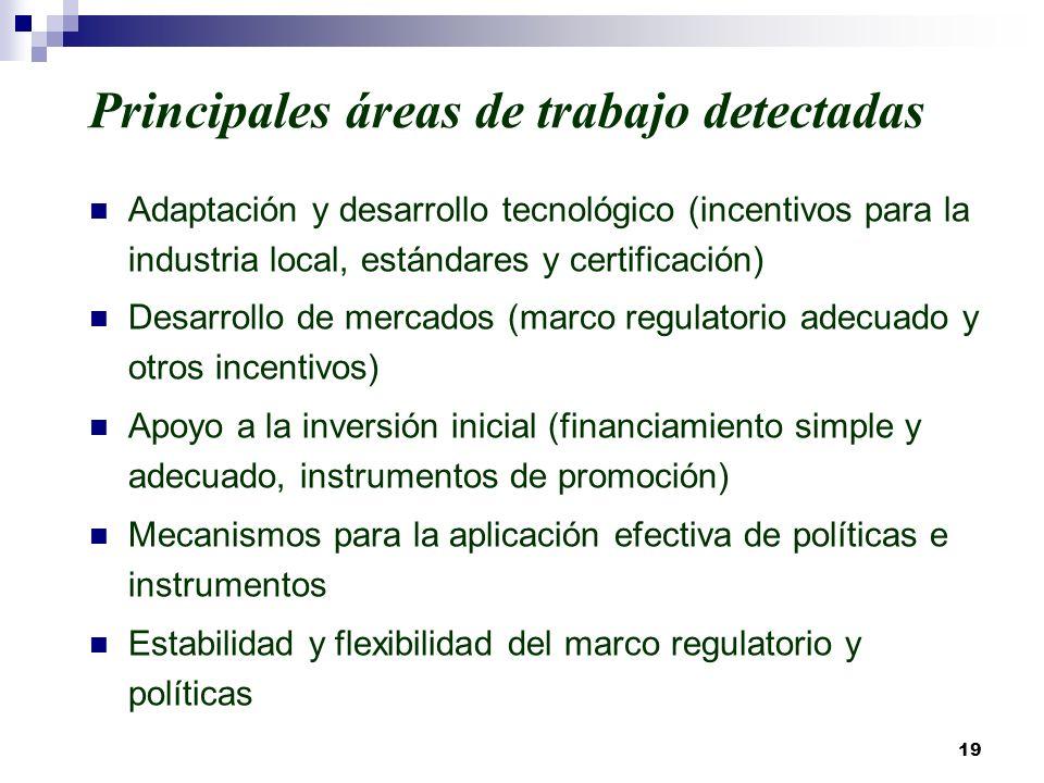 Principales áreas de trabajo detectadas