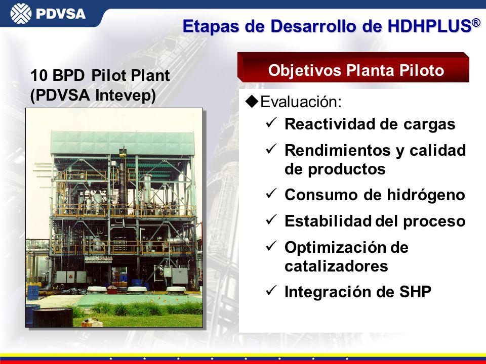 Objetivos Planta Piloto