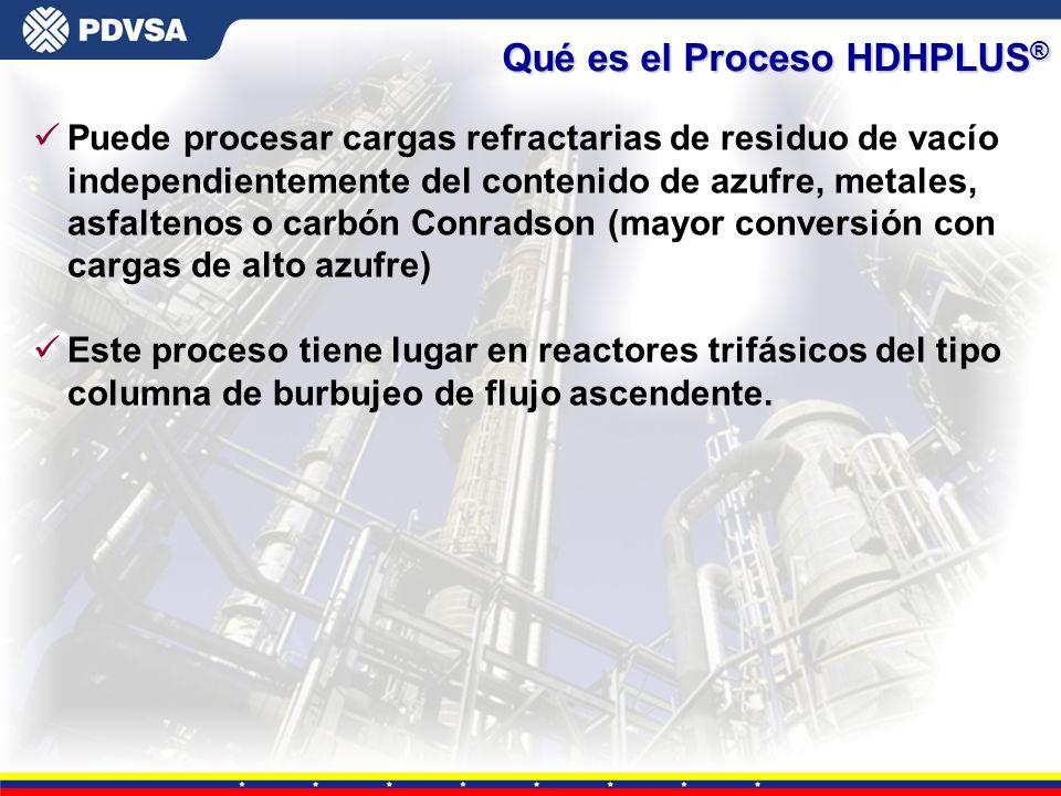 Qué es el Proceso HDHPLUS®