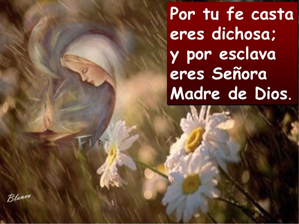 Por tu fe casta eres dichosa; y por esclava eres Señora Madre de Dios.