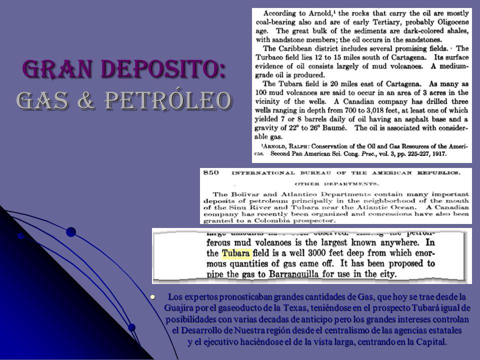 Gran Deposito: GAS & PETRÓLEO