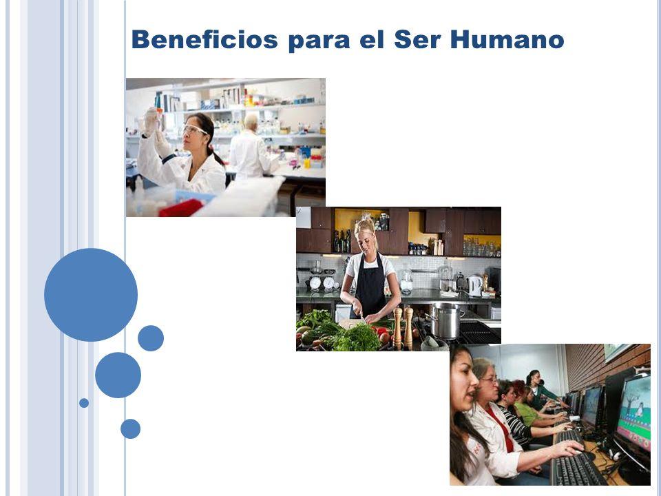 Beneficios para el Ser Humano