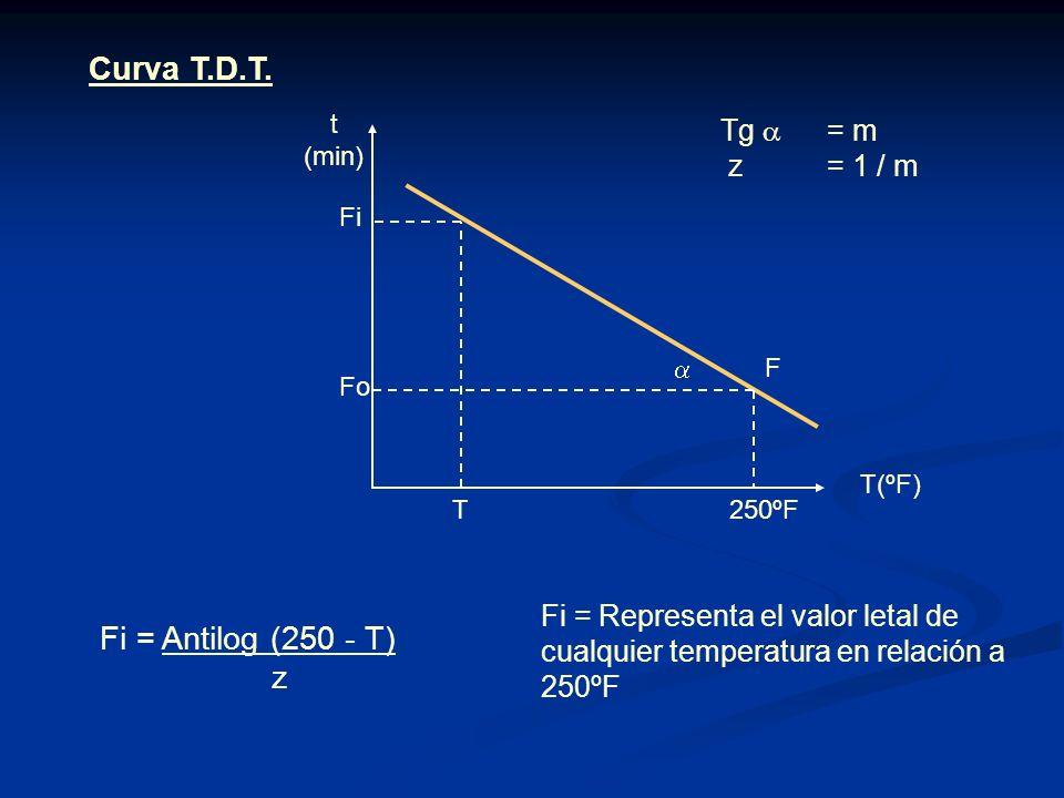 Curva T.D.T. Fi = Antilog (250 - T) z Tg  = m z = 1 / m