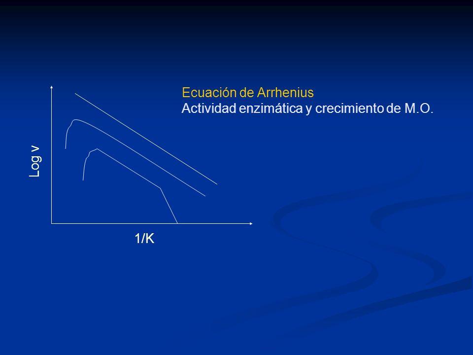 Ecuación de Arrhenius Actividad enzimática y crecimiento de M.O. Log v 1/K