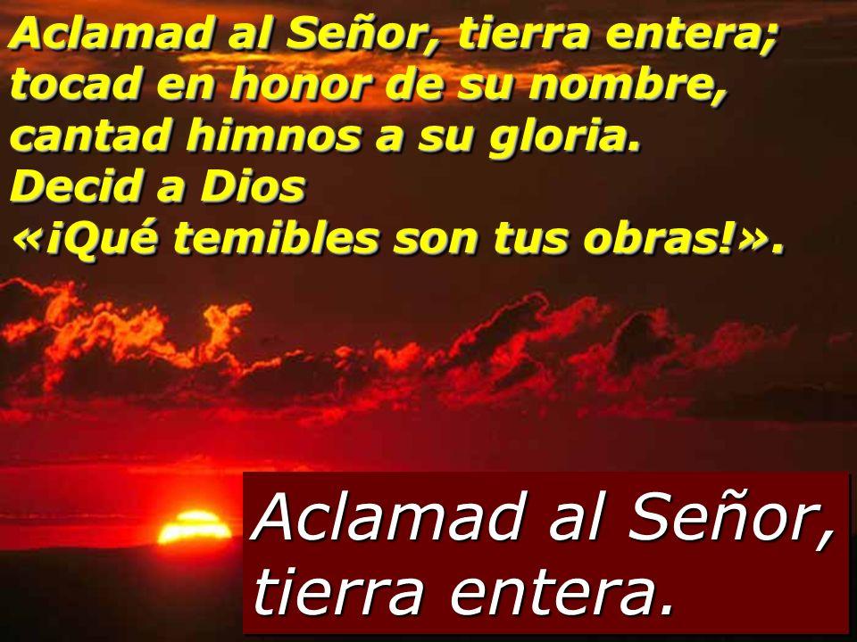 Aclamad al Señor, tierra entera.