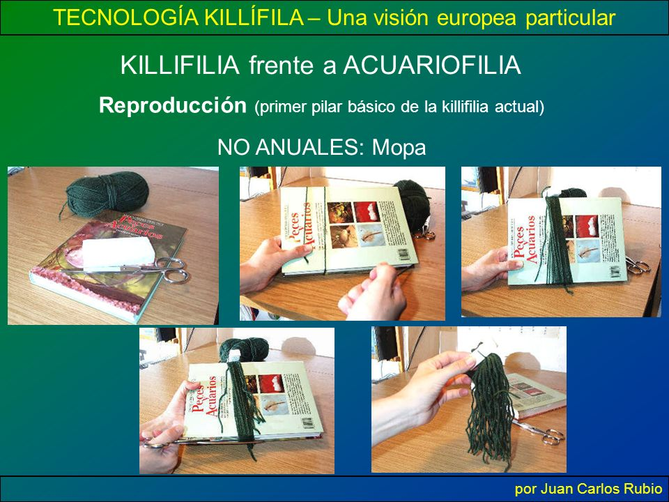 Reproducción (primer pilar básico de la killifilia actual)
