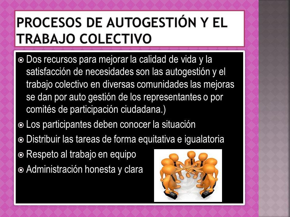 Procesos de autogestión y el trabajo colectivo