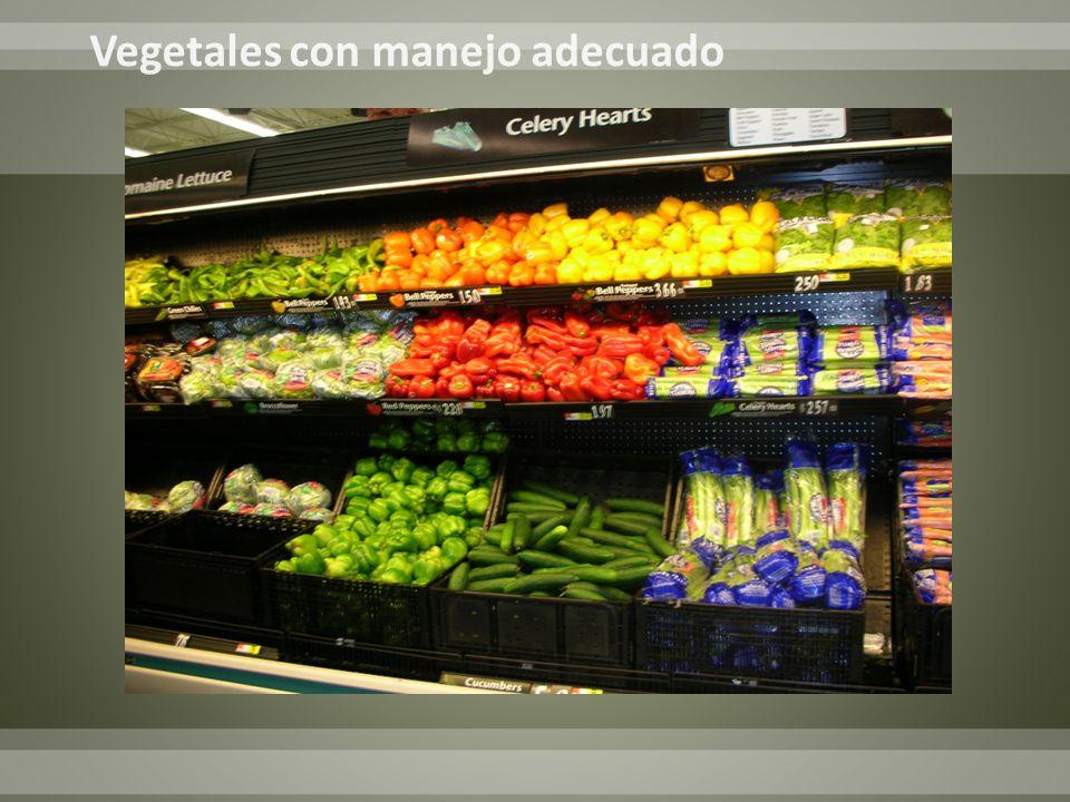 Vegetales con manejo adecuado