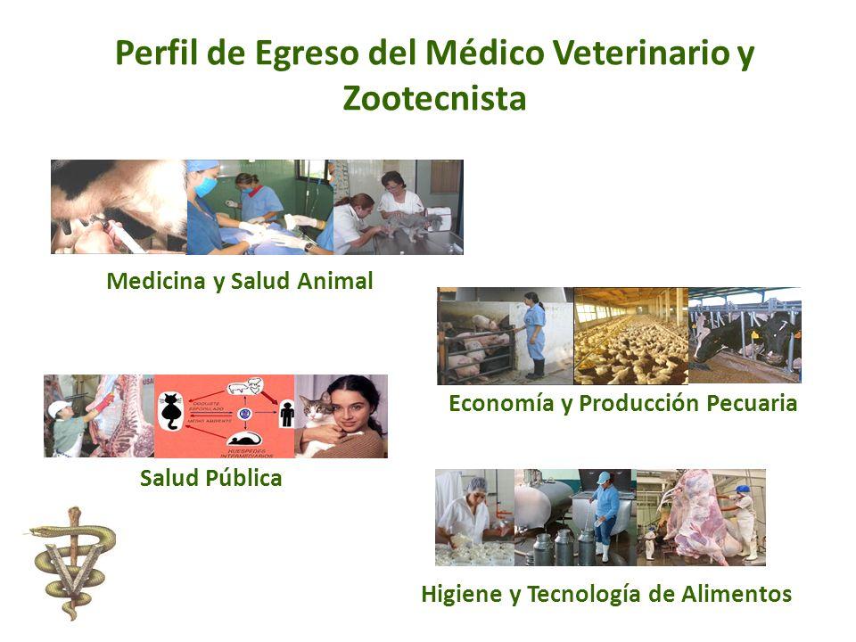 Perfil de Egreso del Médico Veterinario y Zootecnista