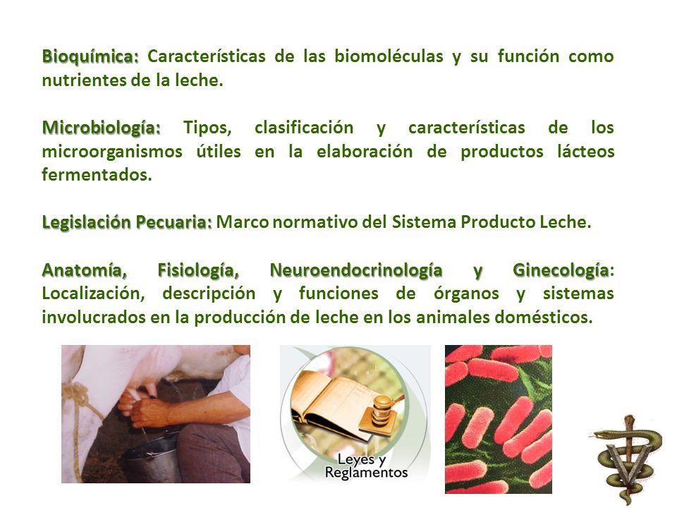 Bioquímica: Características de las biomoléculas y su función como nutrientes de la leche.