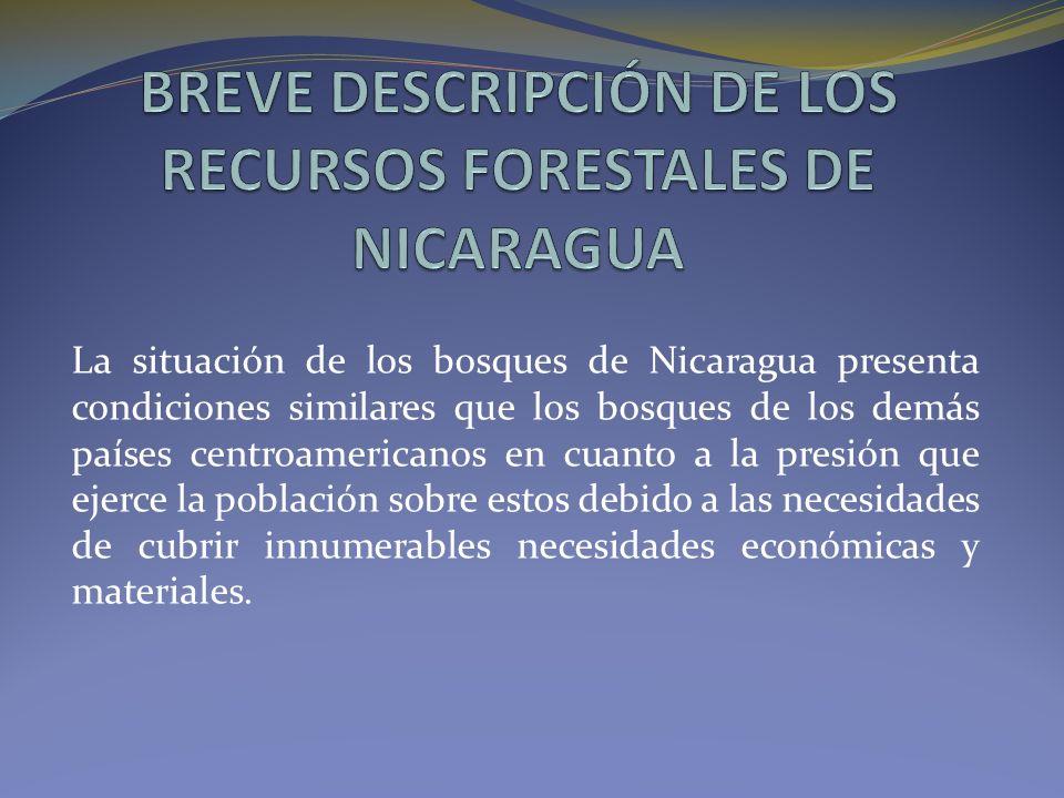BREVE DESCRIPCIÓN DE LOS RECURSOS FORESTALES DE NICARAGUA