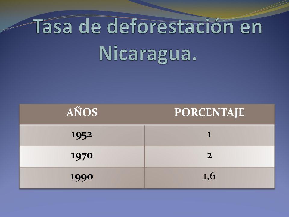 Tasa de deforestación en Nicaragua.